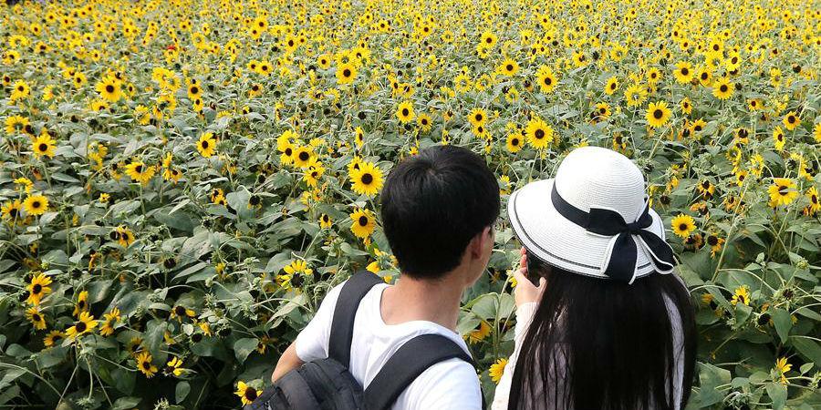 Moradores desfrutam de verão em Shanghai