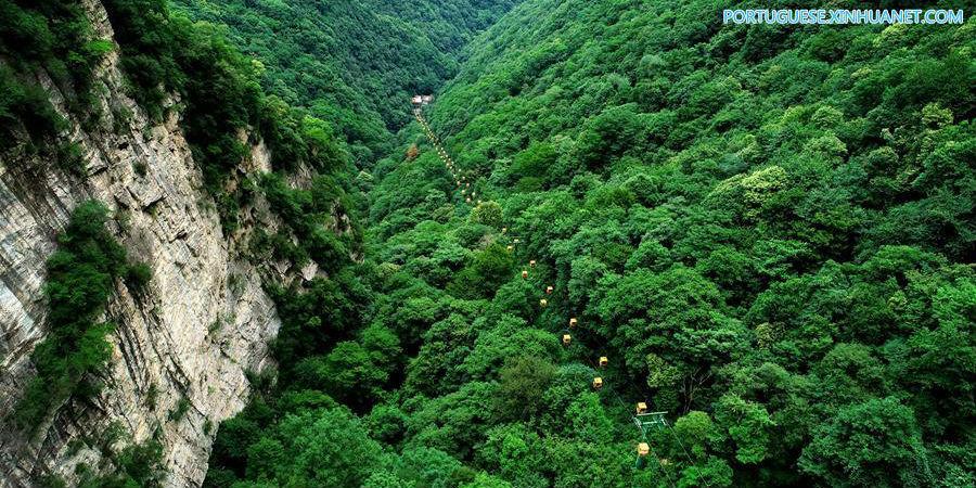 Galeria: paisagem do Parque Nacional Florestal Taiping em Shaanxi