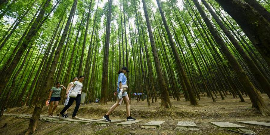 Turistas visitam o Parque Ecológico Nacional de Montanhas de Carste de Shanwangping em Chongqing, sudoeste da China