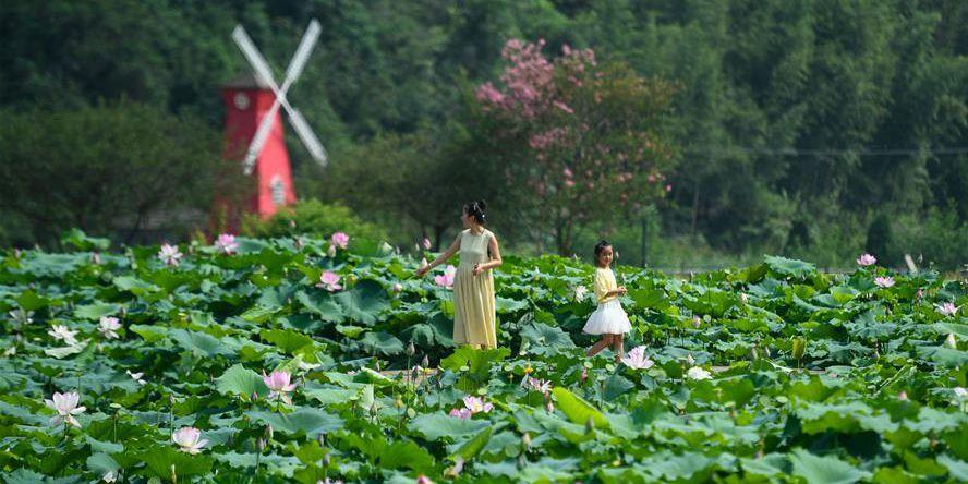 Resort turístico de lazer aumenta o rendimento dos agricultores na província de Zhejiang