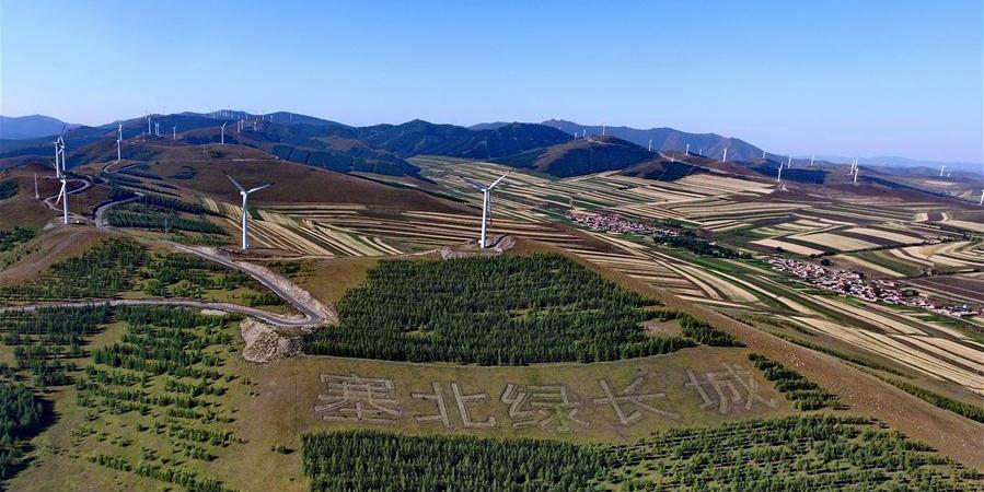 Fotos: paisagem de outono da área de Bashang, no norte da China