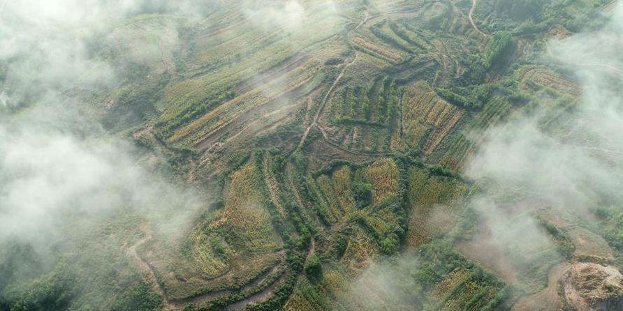 Fotos: Nuvens após chuva no distrito de Lincheng, província de Hebei, no norte da China