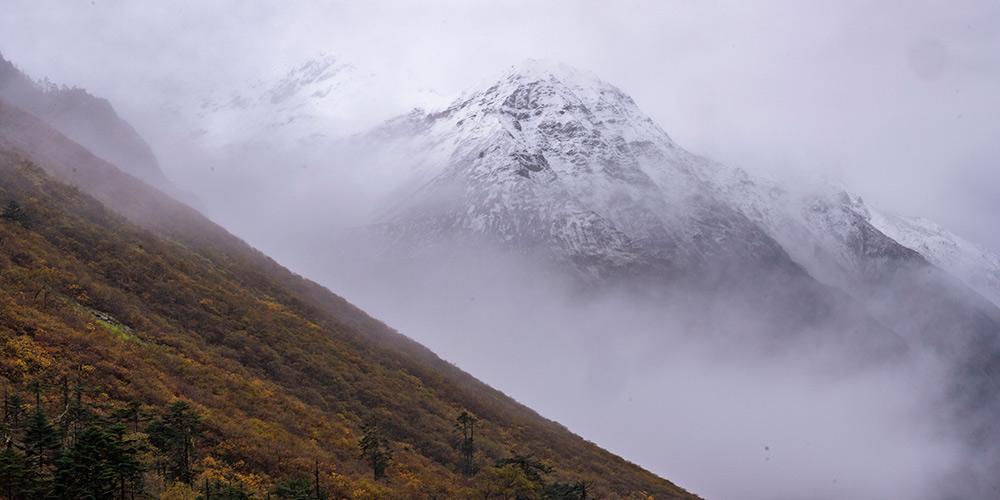 Paisagem de Medog no Tibet, sudoeste da China