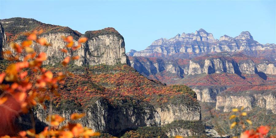 Cenário de folhas vermelhas no distrito de Pingshan