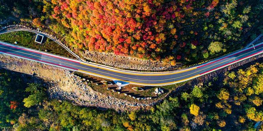 Montanhas Taihang encantam turistas com folhas de outono