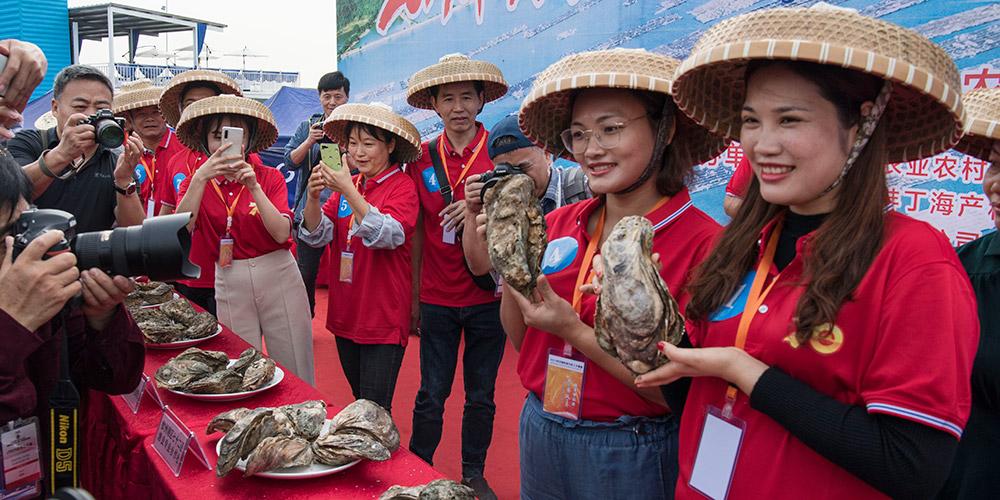 Festival Gourmet da Ostra começa em Qinzhou, Guangxi