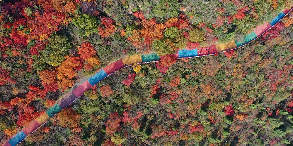 Folhas e paisagens pintadas de laranja na montanha Changshou, província de Henan
