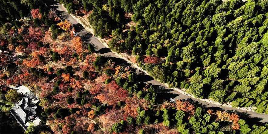 Paisagem da montanha Qianfoshan em Shandong, no leste da China