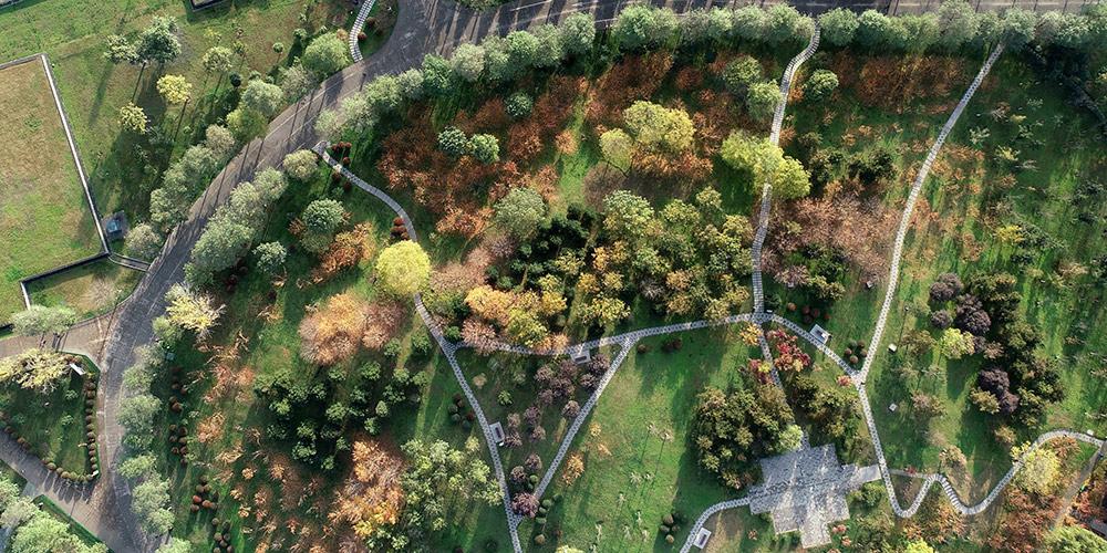 Paisagem de outono do Parque do Patrimônio Nacional Palácio Daming em Xi'an