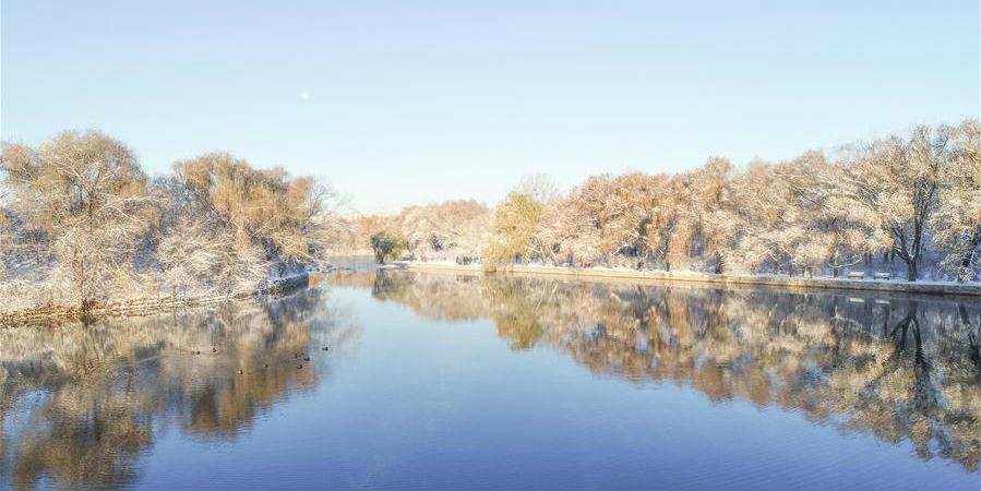 Cenário de neve no parque Beiling em Shenyang