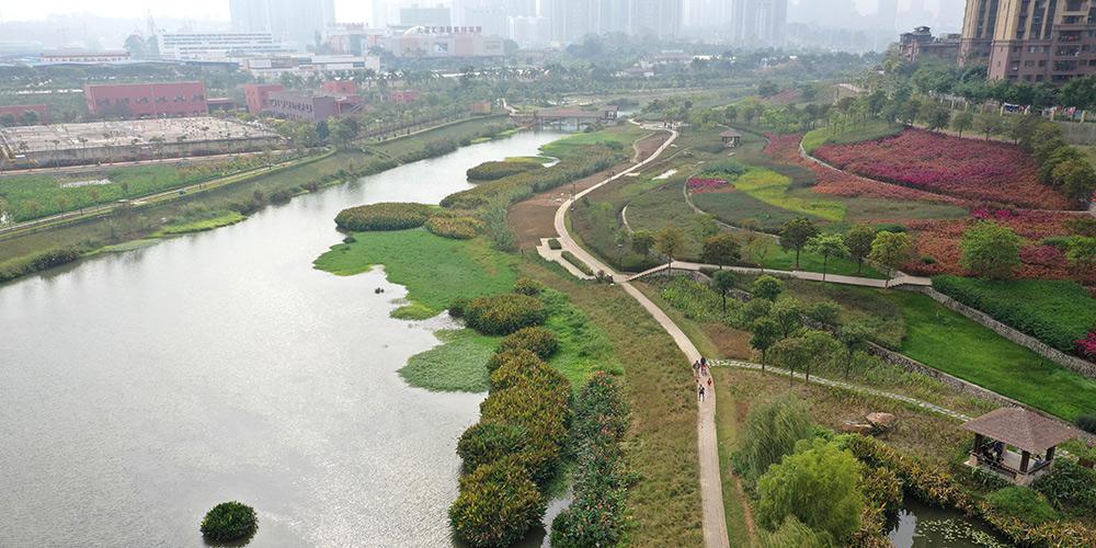 Paisagem do Parque de Pântano do Rio Nakao em Nanning