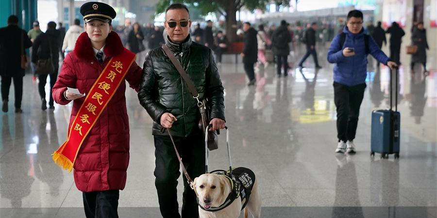 Fotos: Passageiro com deficiência visual e seu cão-guia