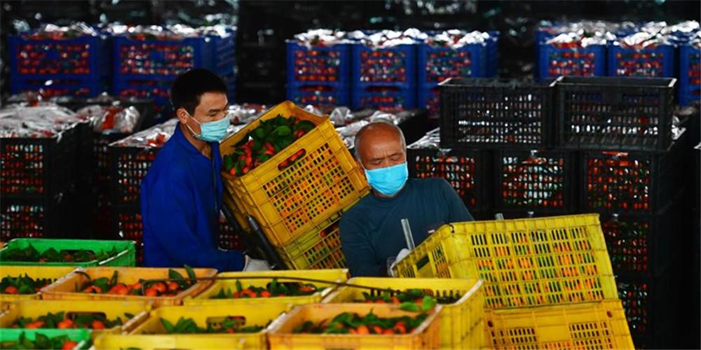 Empresas aceleram esforços para retomada de produção em meio a medidas contra coronavírus na cidade de Liuzhou