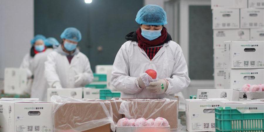 Oficinas de alívio da pobreza retomam produção para garantir renda estável dos economicamente vulneráveis em Hebei