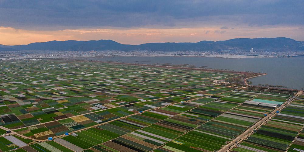Fotos: Paisagem da primavera de região rural em Yunnan