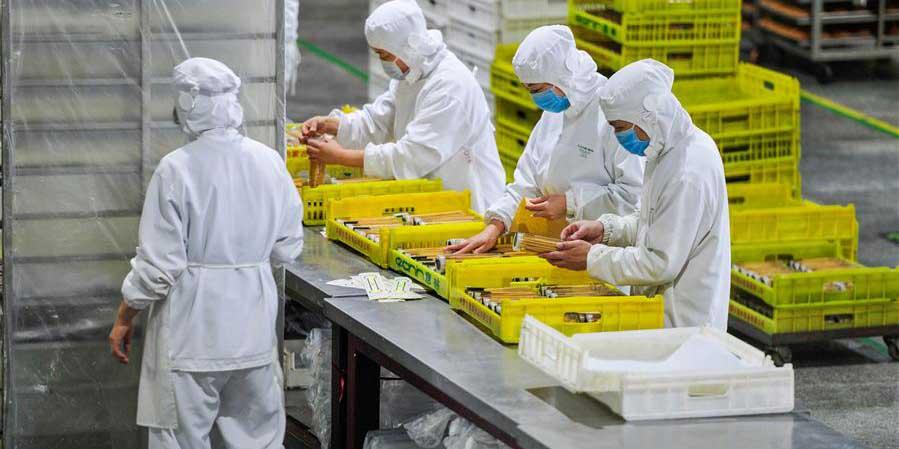 Empresas chinesas retomam produção em meio à luta contra a epidemia do novo coronavírus