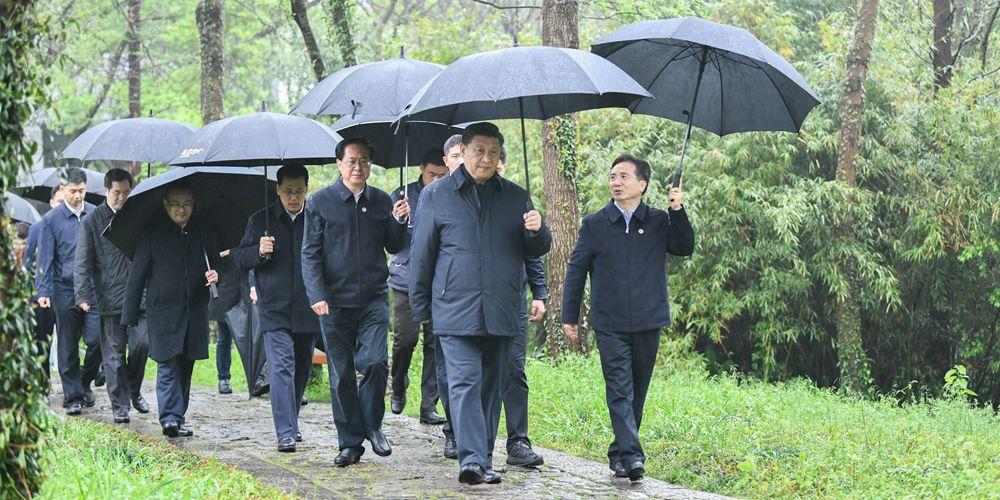 Xi inspeciona conservação de zonas úmidas e gestão urbana em Hangzhou