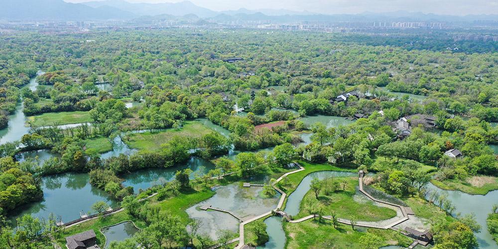 Paisagens do Parque Nacional do Pântano Xixi em Hangzhou