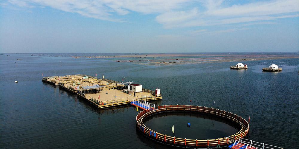Fotos: fazendas marinhas em Rongcheng, leste da China