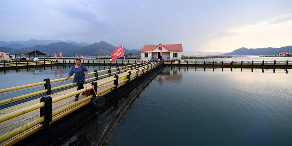 Fotos: zonas de maricultura em Ningde, sudeste da China