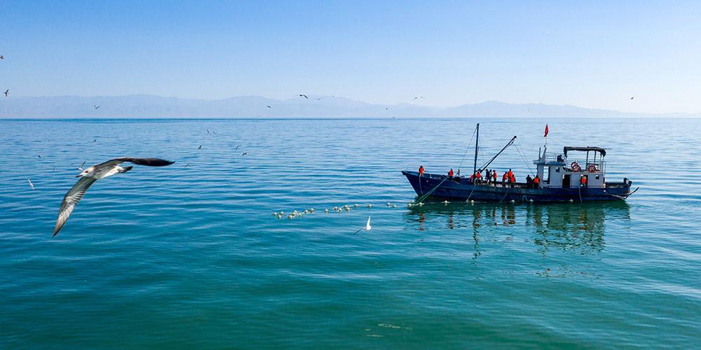 Fotos: pesca no lago Bostan em Xinjiang