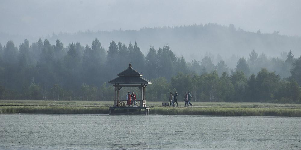 Cenário do Parque Nacional Florestal Saihanba em Chengde