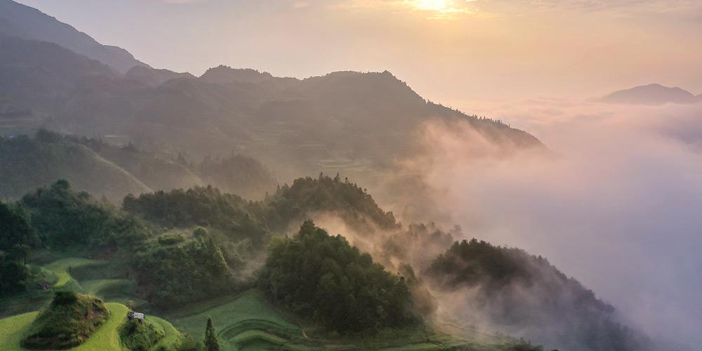 Fotos: vista de terraços em Guizhou