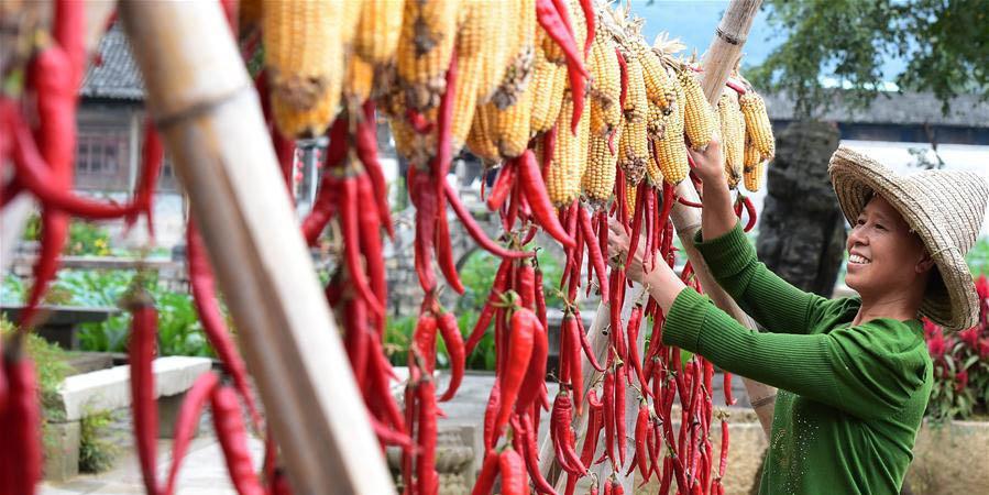 Aldeões secam pimentas-malagueta e milhos na vila de Chengkan, leste da China