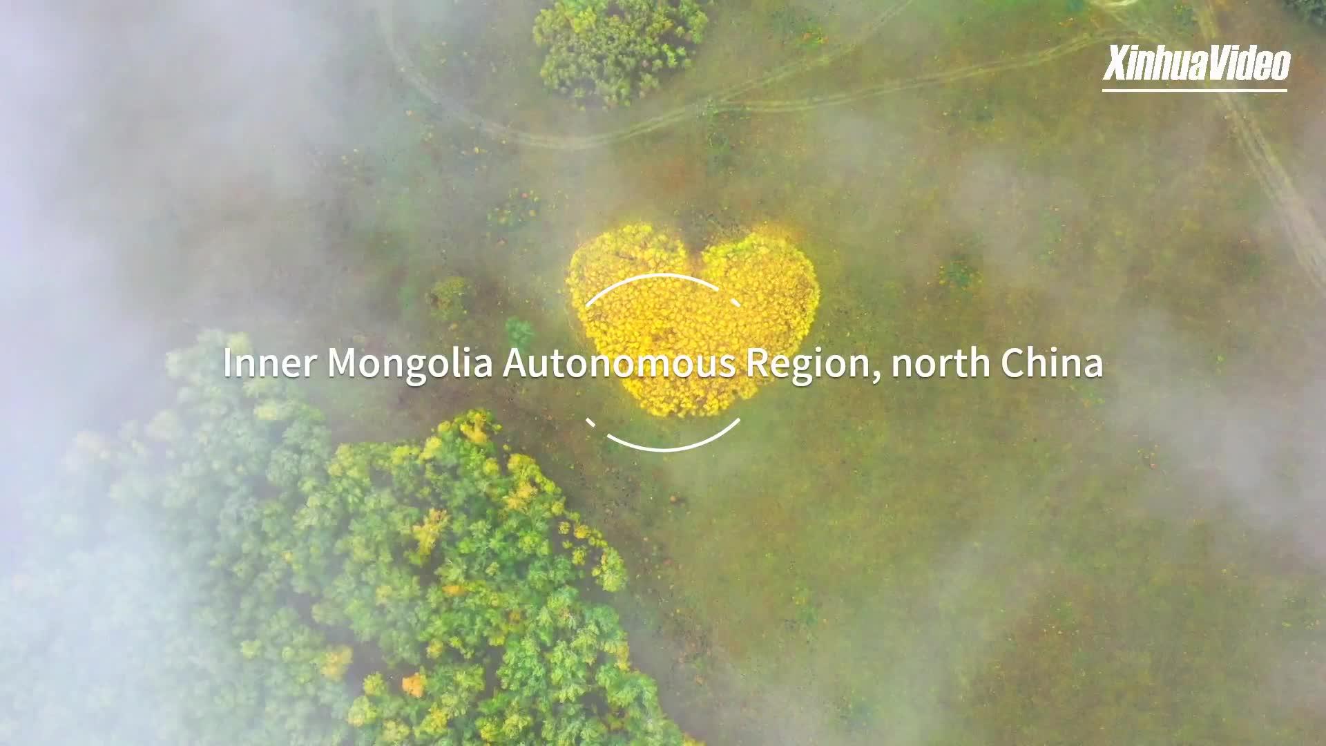 Deslumbrante vista aérea do norte da China