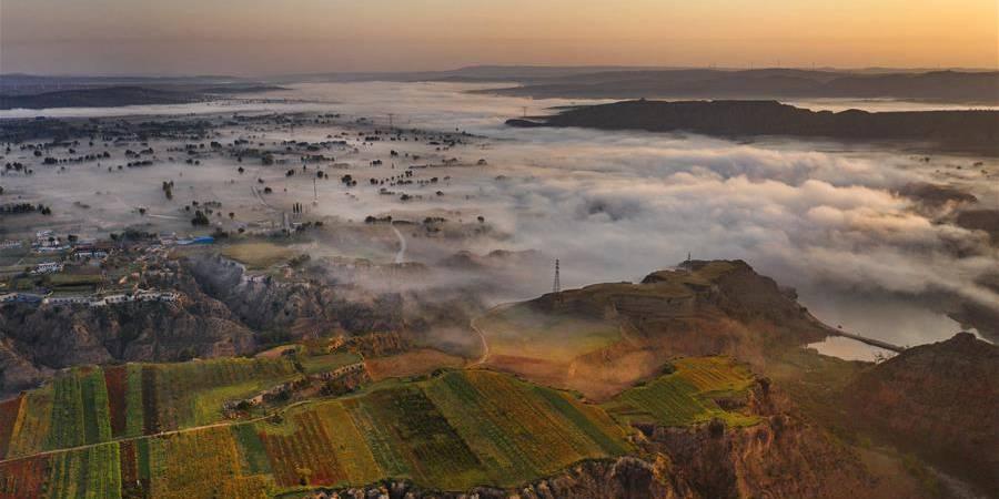 Ambiente ecológico melhora no distrito de Jingbian graças aos esforços de reflorestamento