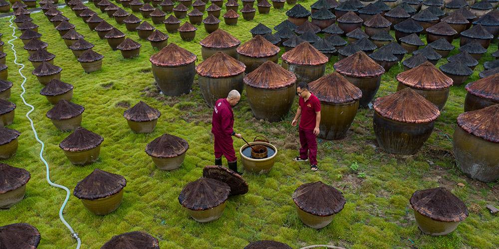 Método tradicional de fabricação do molho de soja em Sichuan