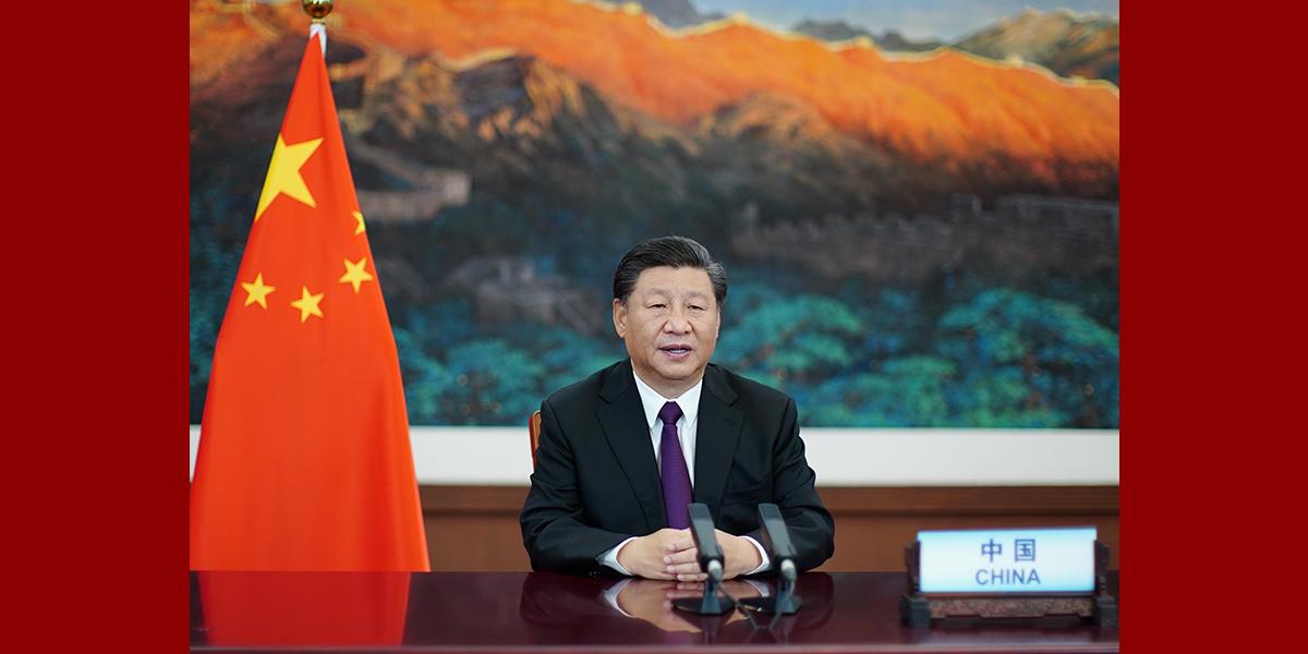 Xi pede fortalecimento da conservação da biodiversidade e da governança ambiental global