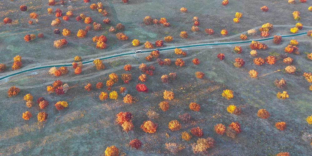 Paisagem de Wujiaofeng, local pitoresco na Mongólia Interior