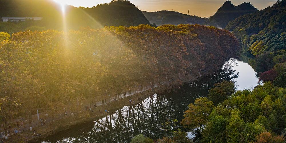 Paisagem de outono do Parque Nacional do Pântano Urbano Huaxi em Guiyang
