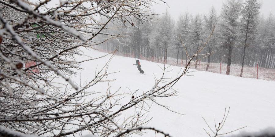 Queda de neve atinge Chongli em Hebei, norte da China