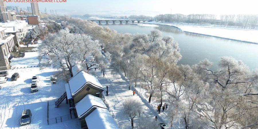 Paisagem de árvores cobertas de geada ao longo do rio Mudanjiang em Heilongjiang