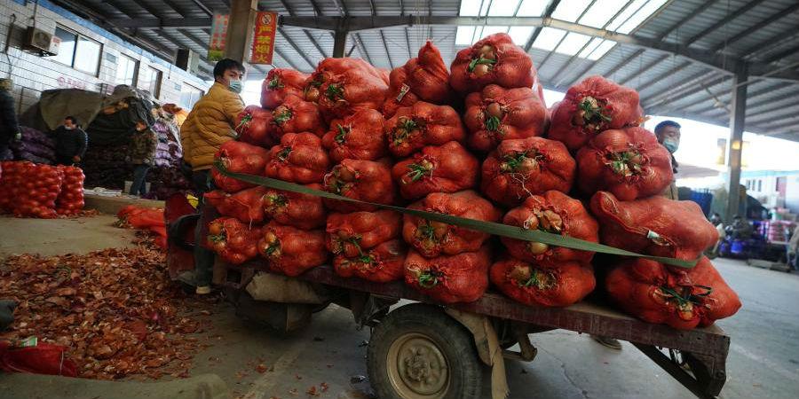 Comerciantes de vegetais mantêm negócios normais no mercado em Shijiazhuang