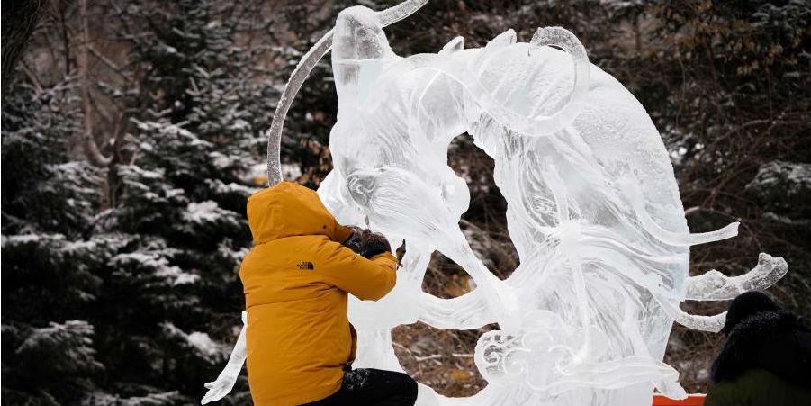 Escultores de gelo se preparam para a 47ª feira de lanternas de gelo em Harbin