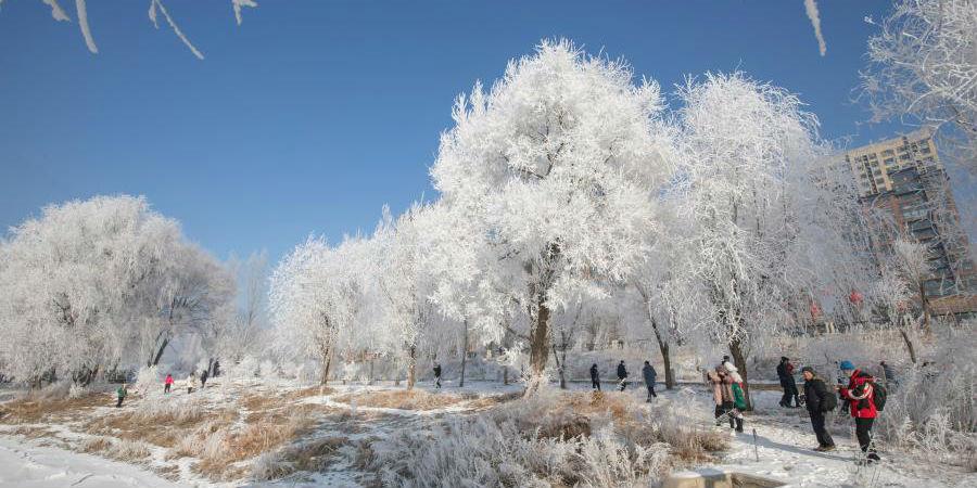 Visitantes apreciam a paisagem gelada ao longo do rio Songhua na cidade de Jilin