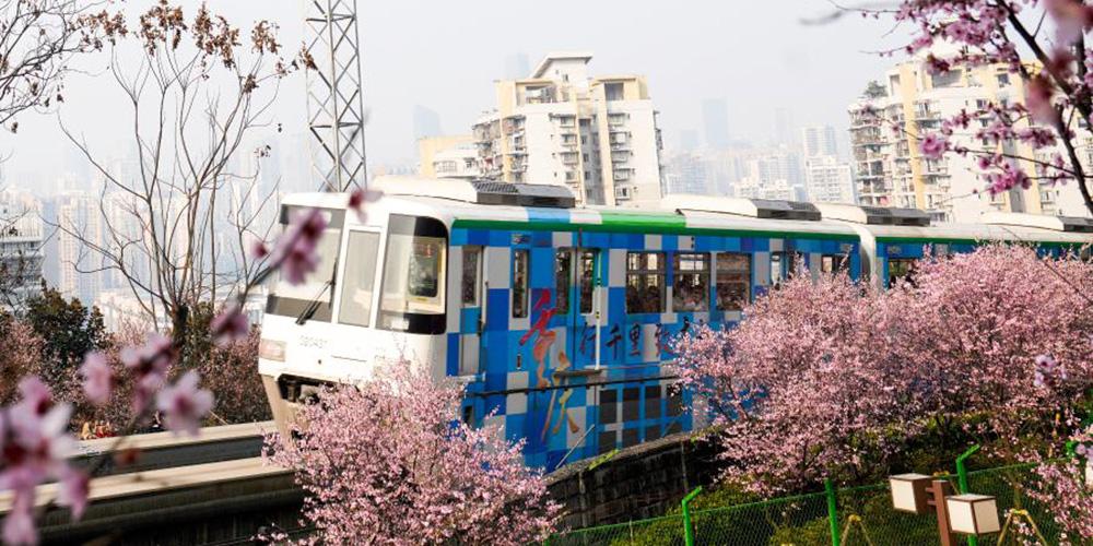Flores na janela do trem de monotrilho em Chongqing