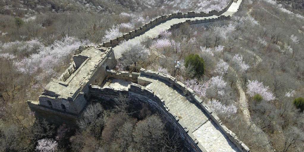 Paisagem de primavera da Grande Muralha de Mutianyu em Beijing